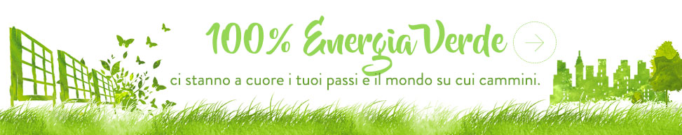 Fly Flot utilizza 100% energia verde!